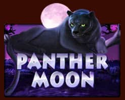 game-panther-moon