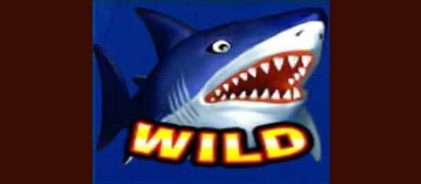 สัญลักษณ์ฉลาม ( Wild )